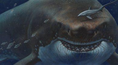 تصویر از 10 مخلوق وحشت آفرین اعماق دریاها