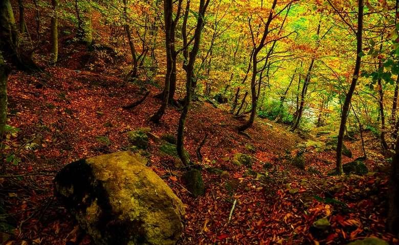 بهترین مکان برای سفر داخلی در پاییز,جاهای دیدنی ایران در پاییز,مقاصد گردشگری در پاییز