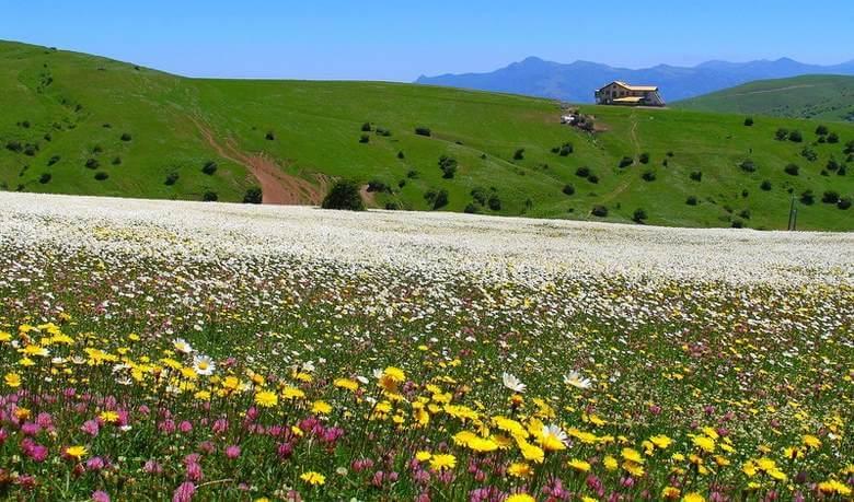 جاذبه گردشگری اردبیل,فهرست جاذبه های گردشگری استان اردبیل,لیست جاذبه های گردشگری اردبیل