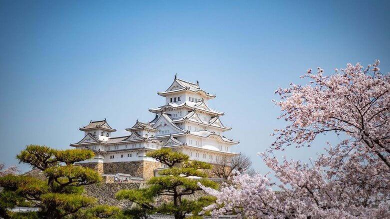 بهترین زمان سفر به ژاپن,بهترین فصل برای سفر به ژاپن,بهترین فصل سفر به ژاپن,