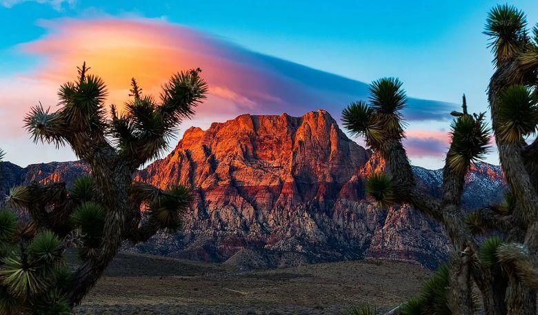 صحراهای عجیب ترین,عجیب ترین بیابان های جهان,عجیب ترین صحراها,
