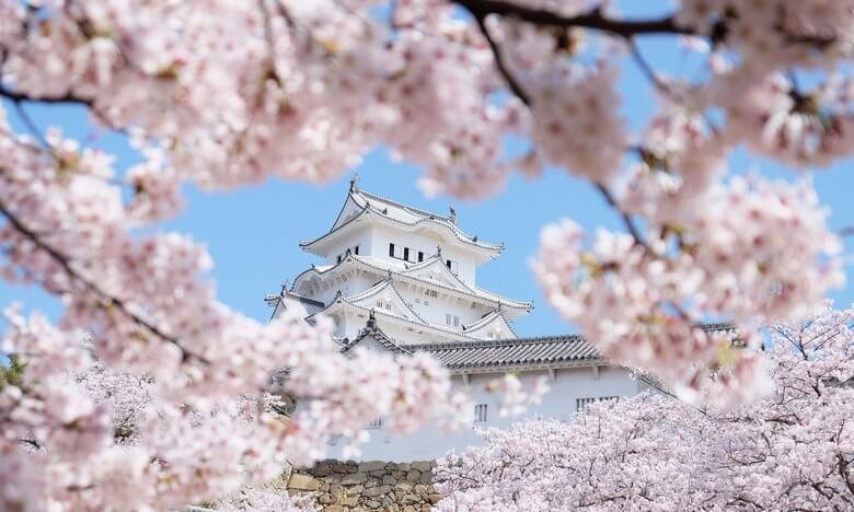 هزینه سفر به ژاپن,بهترین زمان برای سفر به ژاپن,بهترین زمان سفر به ژاپن,