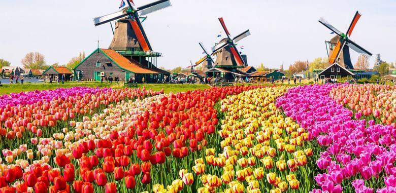 سوغاتی های هلند,سوغاتی های کشور هلند,سوغاتی هلند,