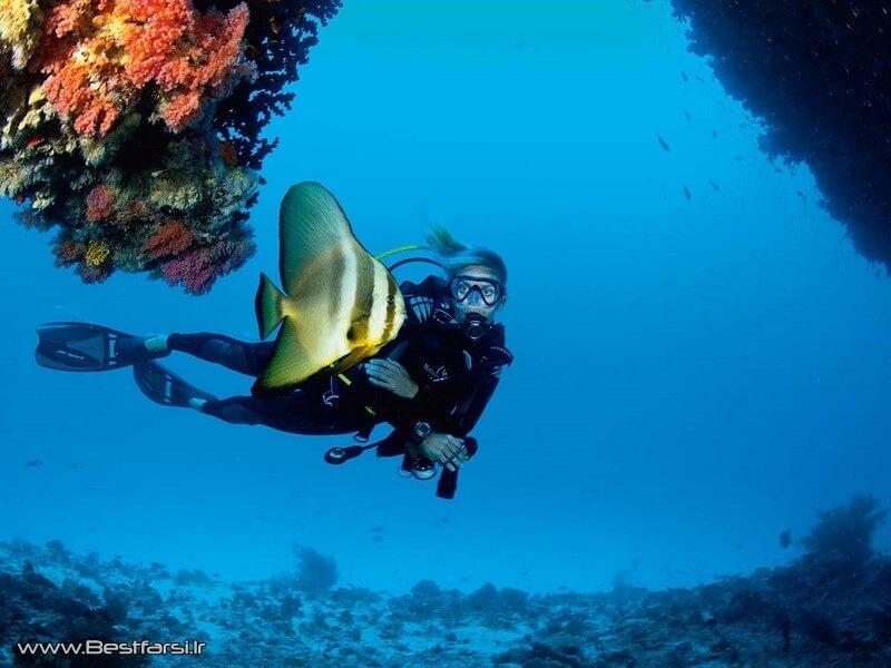 بهترین زمان سفر به مالدیو,بهترین فصل سفر به مالدیو,تور مالدیو