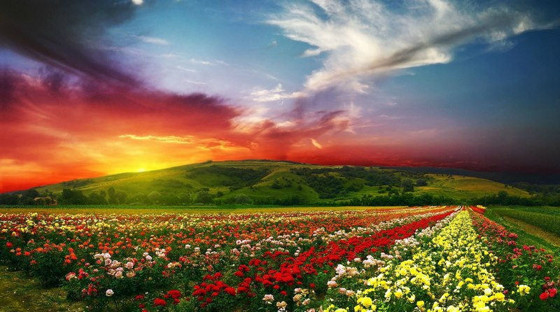 بهترین زمان سفر به بلغارستان,بهترین فصل سفر به بلغارستان,بهترین زمان برای سفر به بلغارستان