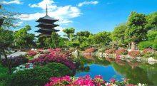 تصویر از بهترین زمان سفر به ژاپن
