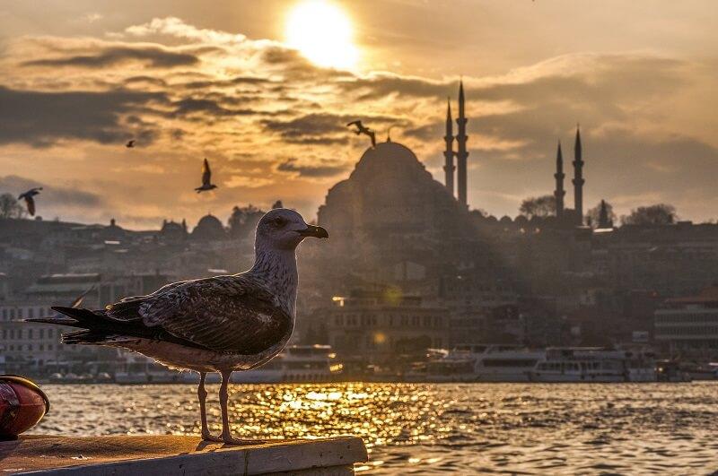 بهترین زمان سفر به استانبول,بهترین زمان سفر به استانبول برای خرید,بهترین زمان سفر به استانبول ترکیه