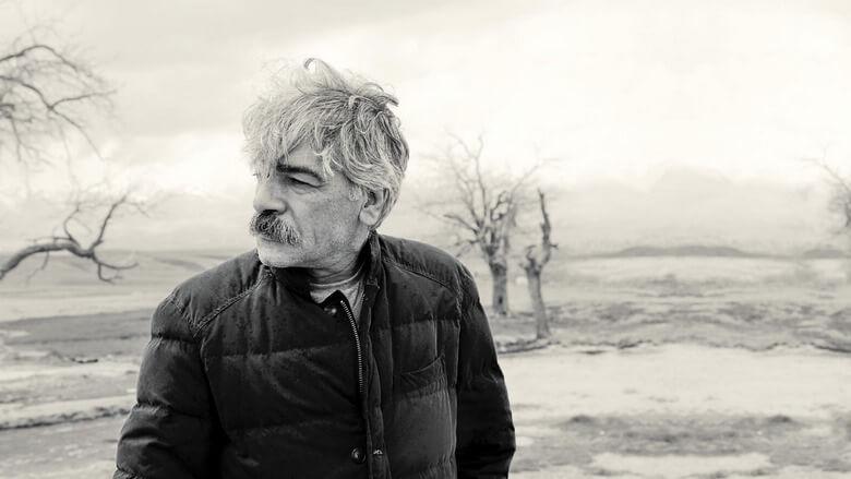 بیوگرافی کیهان کلهر,بیوگرافی کیهان کلهر نوازنده,بیوگرافی کیهان کلهر ویکی پدیا