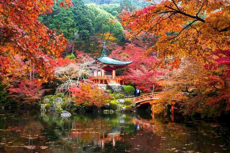 بهترین فصل برای سفر به ژاپن,بهترین فصل سفر به ژاپن,راهنمای سفر به ژاپن,