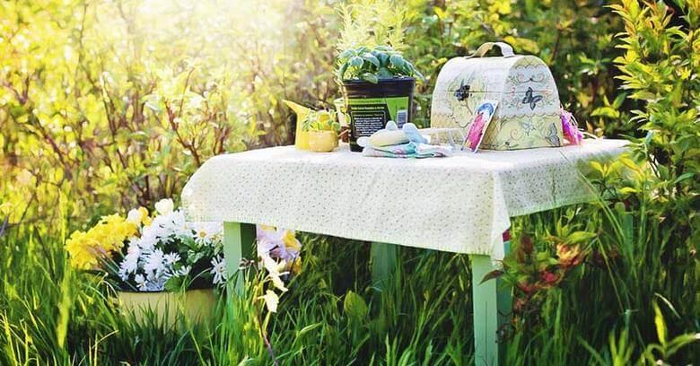 راز شادابی گل,نحوه نگهداری گل سنبل در خانه,نگهداری گل طبیعی