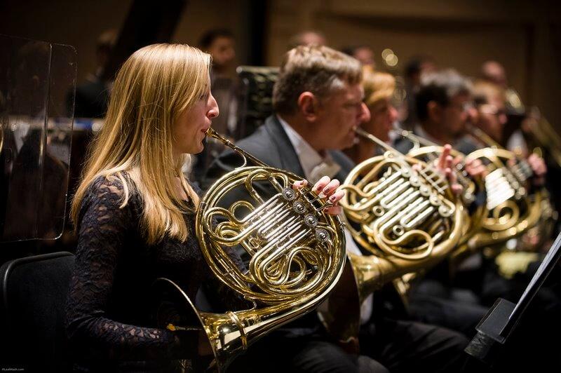 سخت ترین الات موسیقی,سخت ترین ساز موسیقی,سخت ترین ساز موسیقی برای یادگیری,