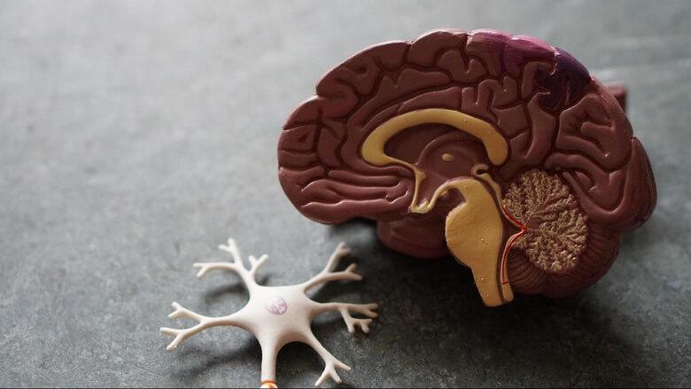 بیماری پارکینسون چیست,علائم بیماری پارکینسون,علائم بیماری پارکینسون در مردان,