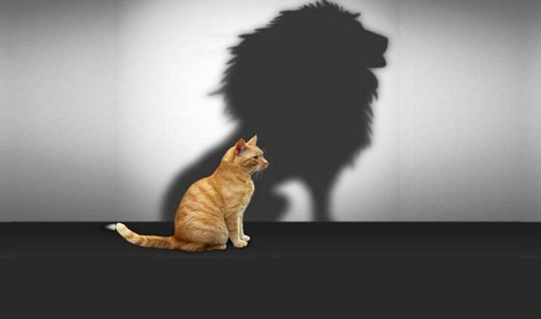 تعریف باور چیست,تقویت خودباوری,خودباوری و اعتماد به نفس,